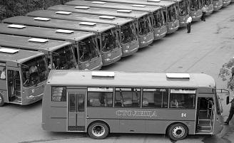 Первая транспортная компания не желает возить граждан, имеющих льготы